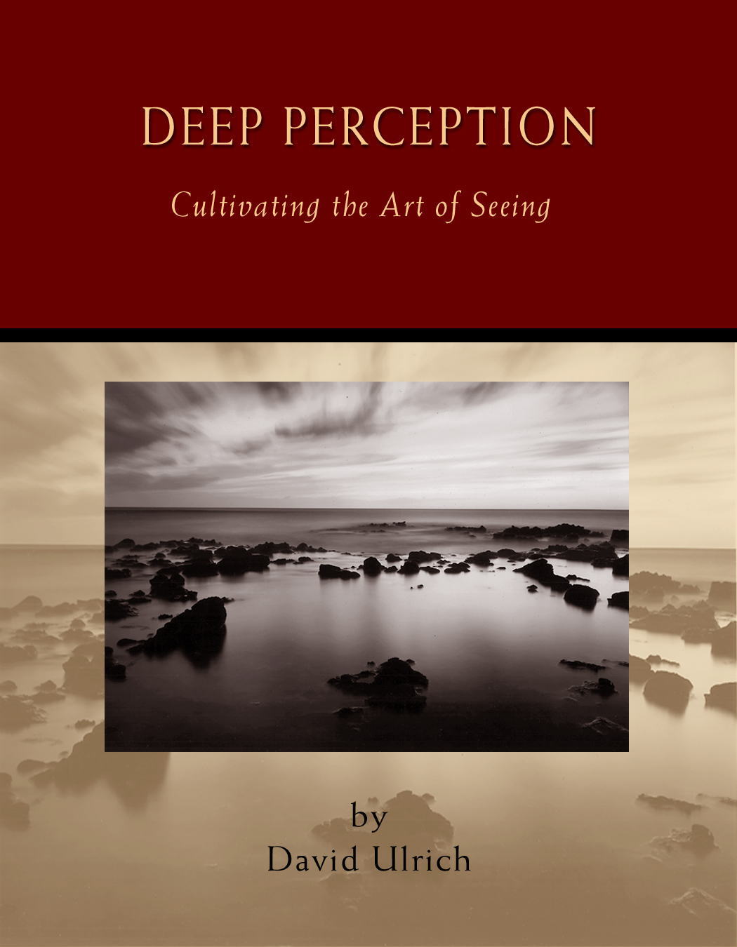 Deep Perception cover